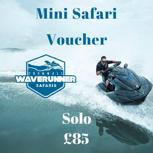 Mini Safari Voucher