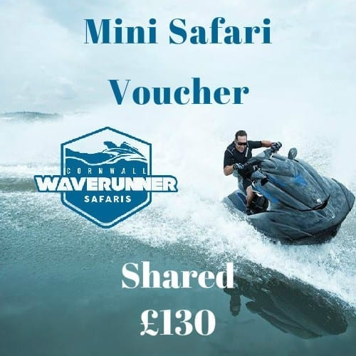 mini safari shared voucher